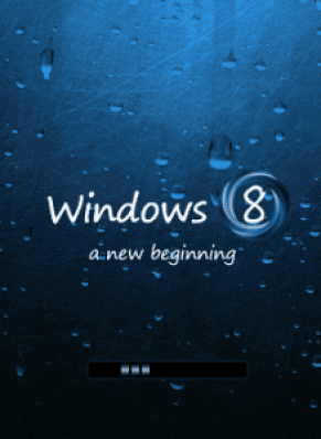 Article Windows8 219x300